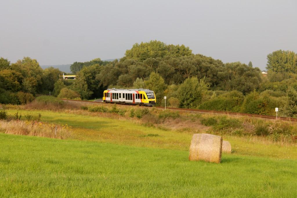 Ein LINT der HLB, als Sonderzug zum Schmaadleckermarkt, zwischen Daubringen und Lollar auf der Lumdatalbahn am 07.09.2014.