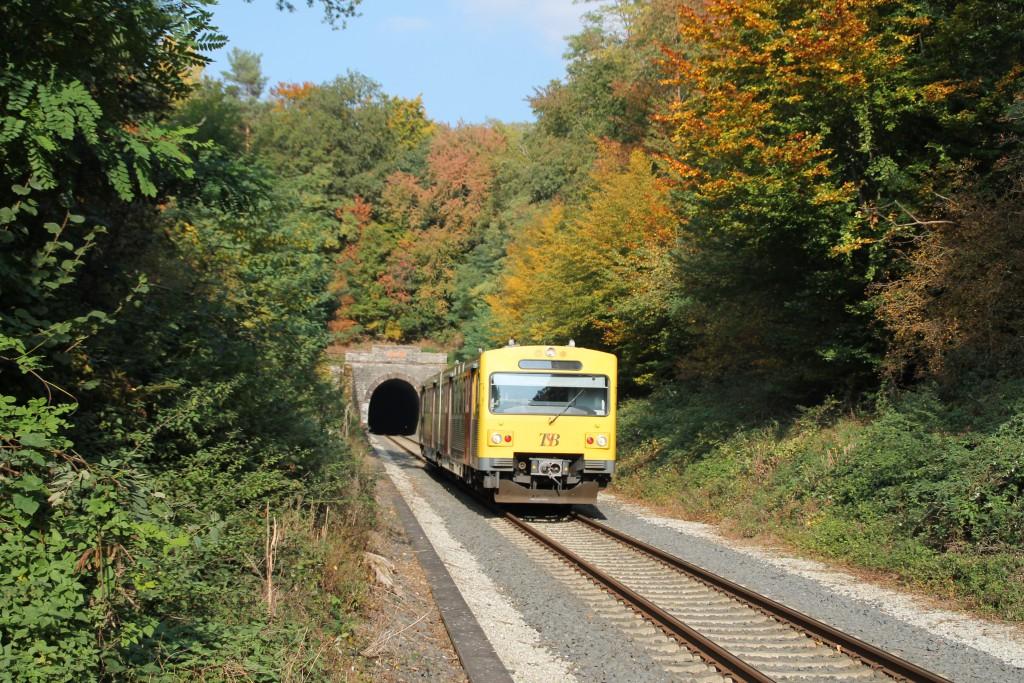 Ein VT2E der HLB verlässt das herbstlich umrandete Tunnelportal des Hasselborner Tunnels auf der Taunusbahn, aufgenommen am 10.10.2015.
