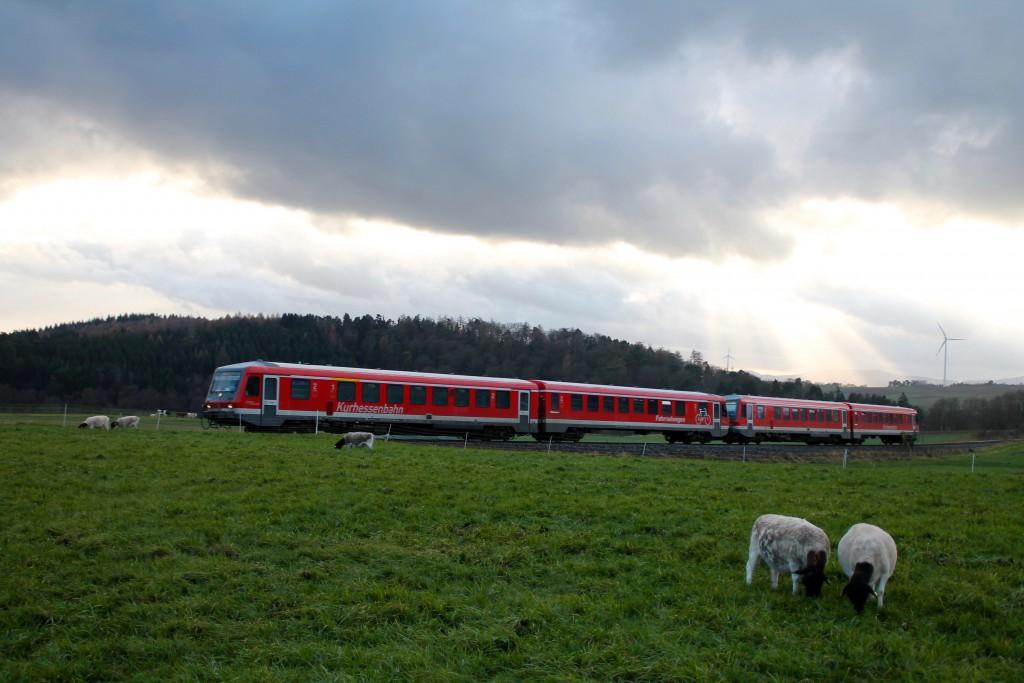 Zwei Triebwagen der Baureihe 628 vor einer Schafweide bei Wiesenfeld auf der Burgwaldbahn, aufgenommen am 28.11.2015.