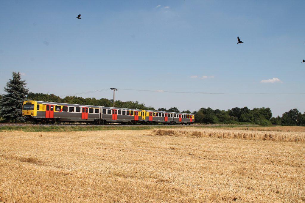 Zwei VT2E der HLB passieren Kornfelder bei Münster auf der Frankfurt-Königsteiner-Eisenbahn, aufgenommen am 20.07.2016.