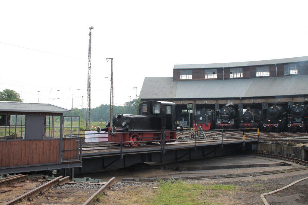 Im Lokschuppen des Bw Hanau verschnaufen gerade einige Dampflokomotiven, aufgenommen am 05.06.2016.