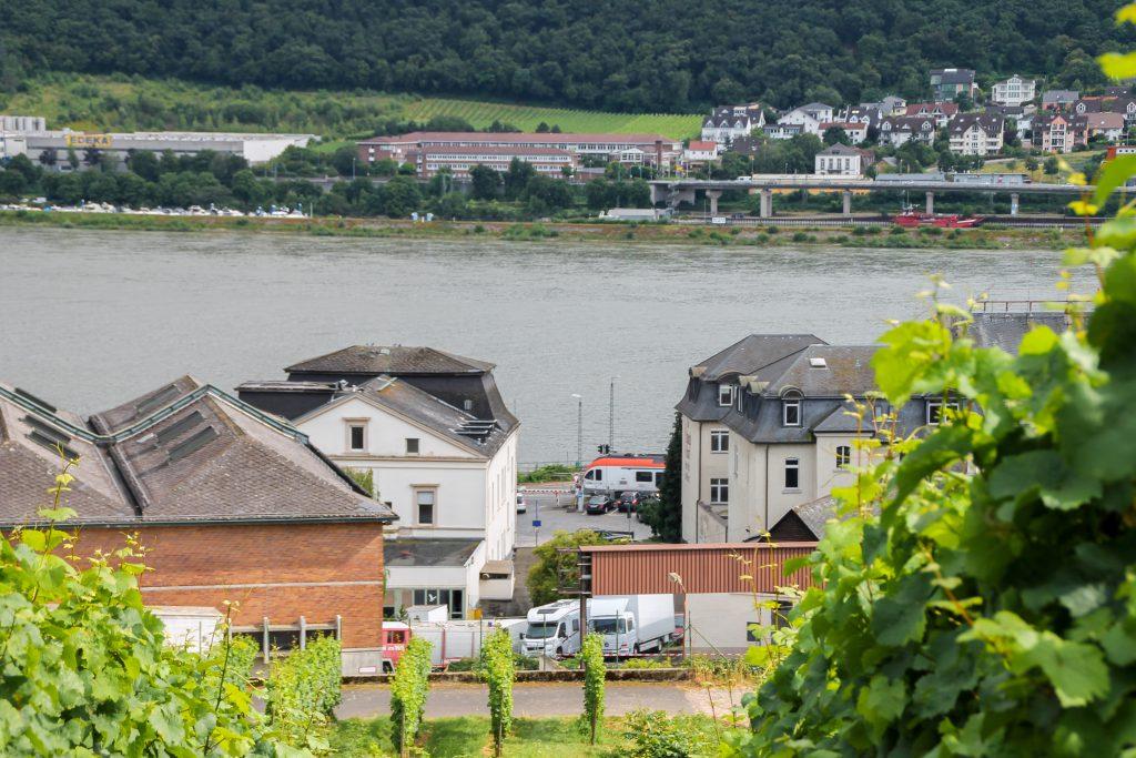 Ein VIAS-Suchbild in Rüdesheim auf der rechten Rheinstrecke, aufgenommen am 17.07.2016.