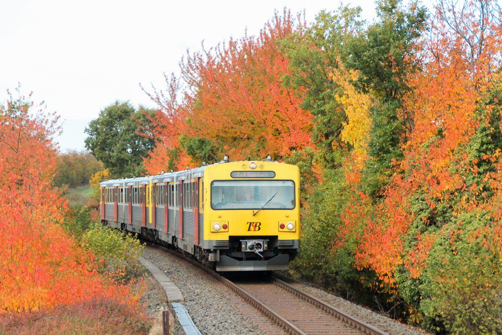 Zwei VT2E der HLB an herbstlich bunten Bäumen in Hundstadt auf der Taunusbahn, aufgenommen am 27.10.2016.