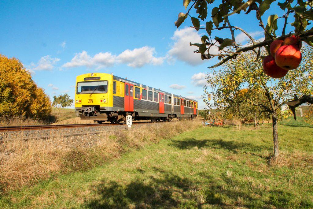 Ein VT2E der HLB an einem Apfelbaum bei Westerfeld auf der Taunusbahn, aufgenommen am 29.10.2016.